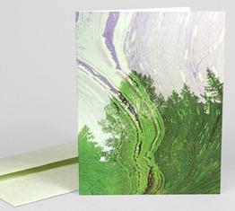 Algae Marbling