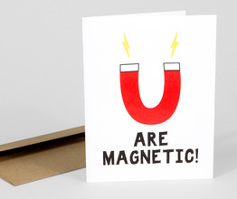 You Are Magnetic!