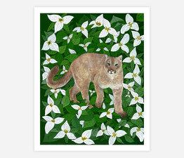 Cougar with Western Trillium
