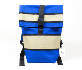 Cobalt Daypack