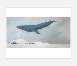 Rest (Blue Whale)