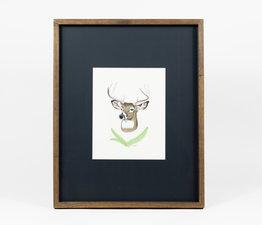 Deer / Deer Fern