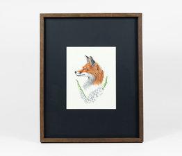 Fox / Foxglove