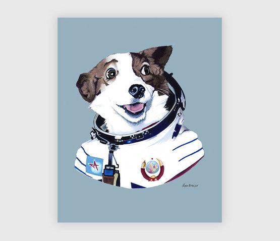berkley-strelka-space-dog