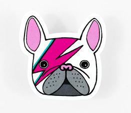 Bowie Bulldog