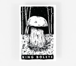 King Bolete