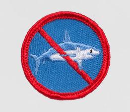 No Sharks