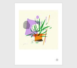 Plant No. 1