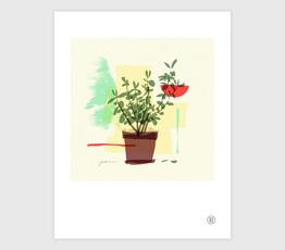 Plant No. 3