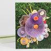 Mushroom Medley with Corals