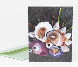 Mushroom Medley Spring Inspired