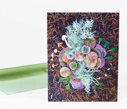 Mushroom Medley Whidbey Picnic