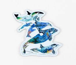 Orca Salish Sea
