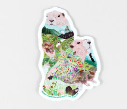 Marmot Summer Meadow