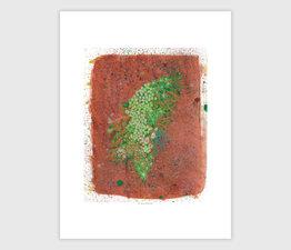 Moss Outcrop