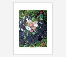 Mushroom Medley Spring Stump