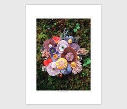 Mushroom Medley with Agaric