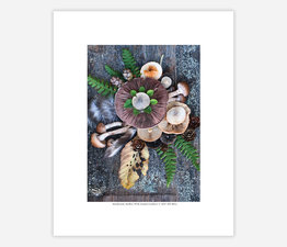 Mushroom Medley with Found Feathers