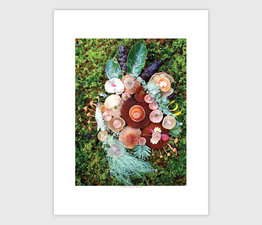 Mushroom Medley with Jawbone