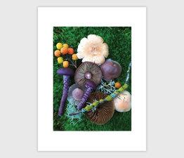 Mushroom Medley with Lichen Stick