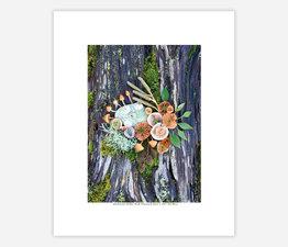 Mushroom Medley with Wayward Moss