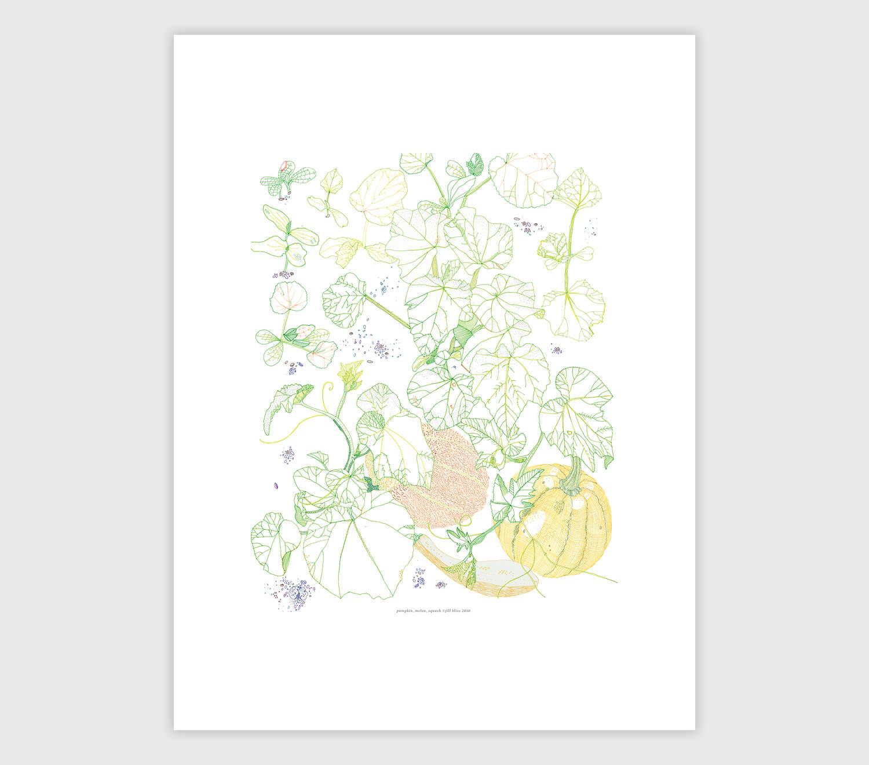 Jill Bliss. Garden Pumkin ...