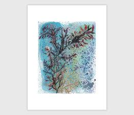 Seaweed Tidepool No. 1