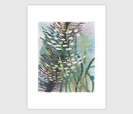 Seaweed Tidepool No. 2