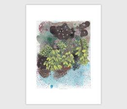 Seaweed Tidepool No. 4