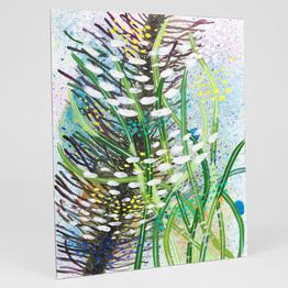 Seaweed Tidepools #2