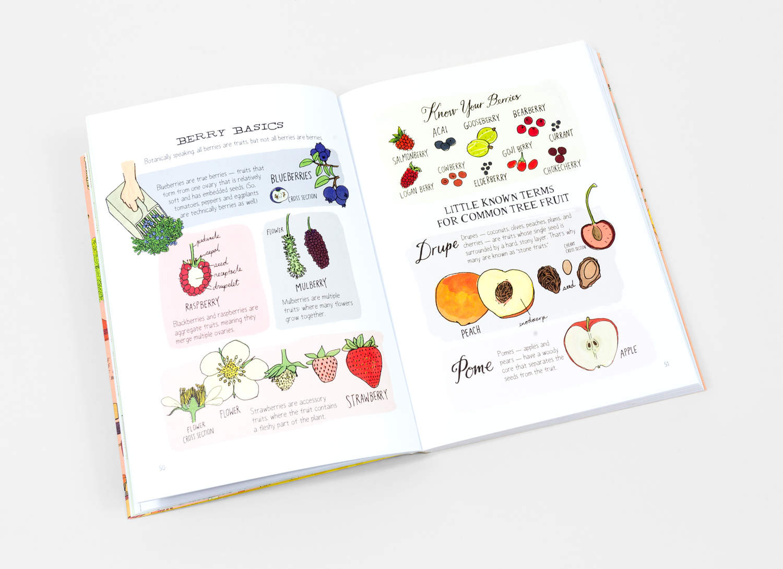 Julia Rothman - Food Anatomy at buyolympia.com