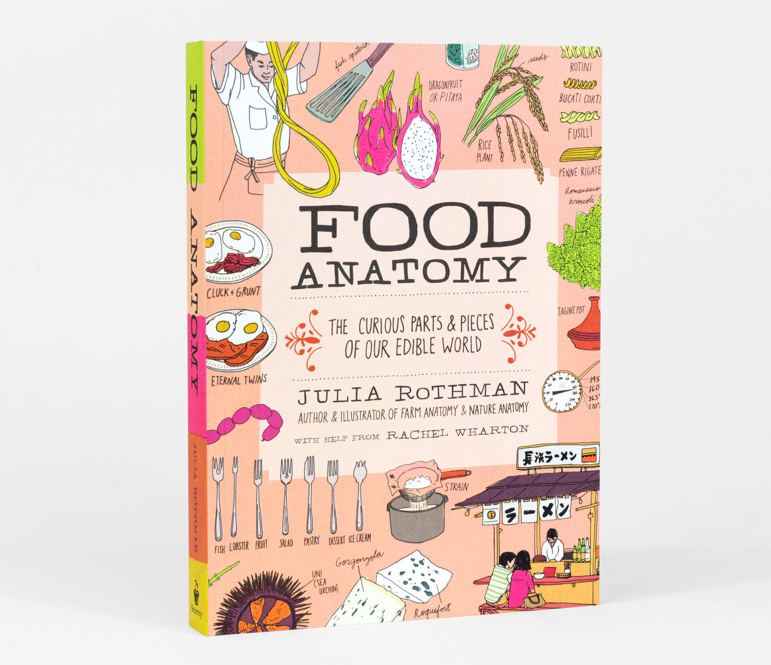 Julia Rothman - Food Anatomy at buyolympia.com