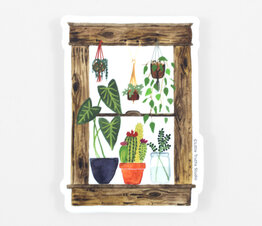 Plants Window