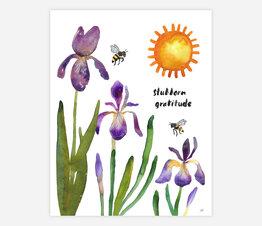 Stubborn Gratitude