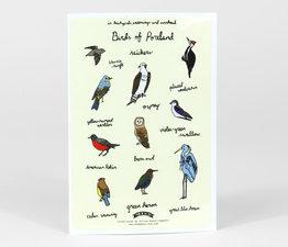 Birds of Portland
