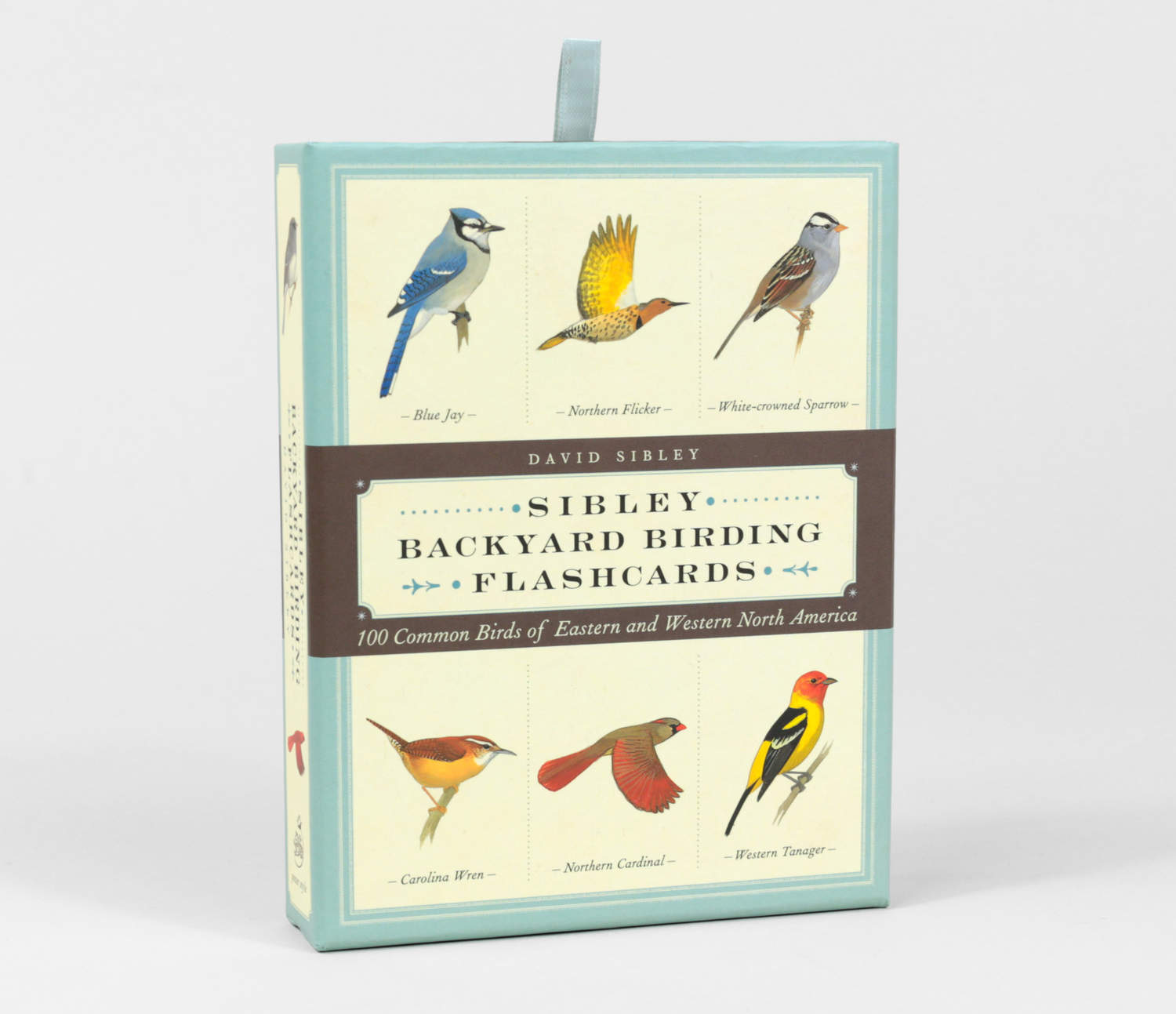 david sibley sibley backyard birding flashcards at buyolympia com