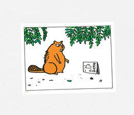 Beaver Becomes A Man