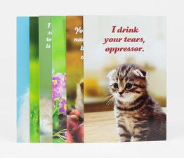Social Justice Kittens Vol. I