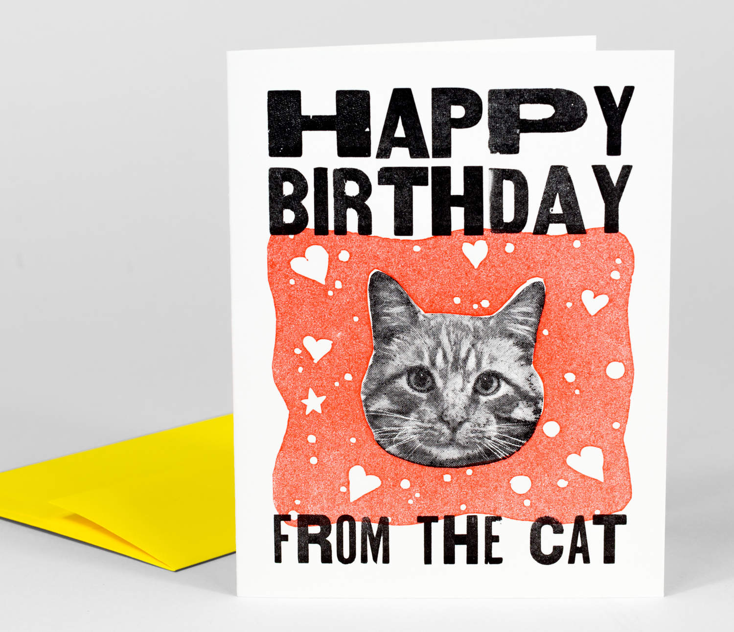Steam Whistle Letterpress Happy Birthday from the Cat at – Birthday Card from Cat