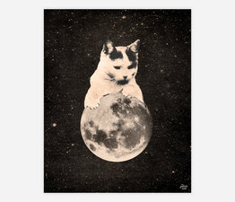 Mooncat No. 2