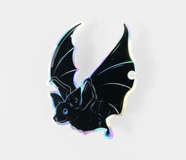 Holographic Bat